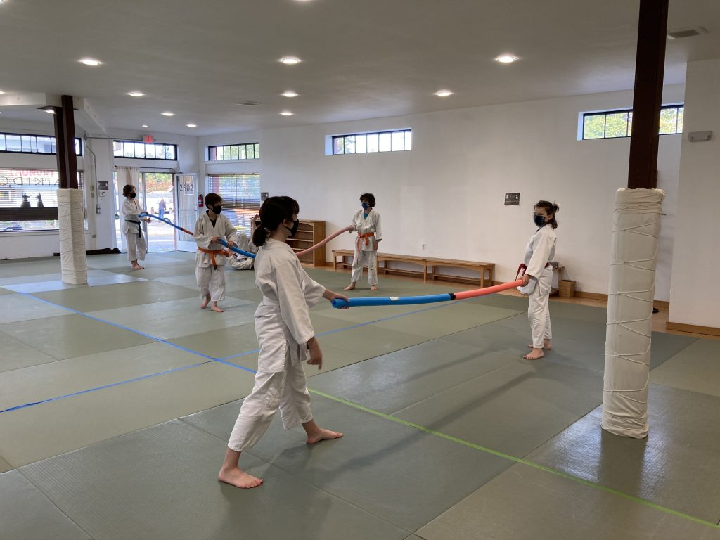Youth Aikido during Covid